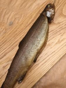 Fisch geräuchert von Pit-Blog